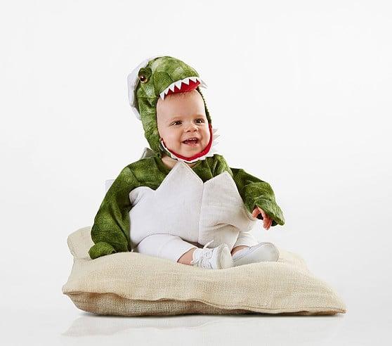 Baby Dinosaur Egg Costume