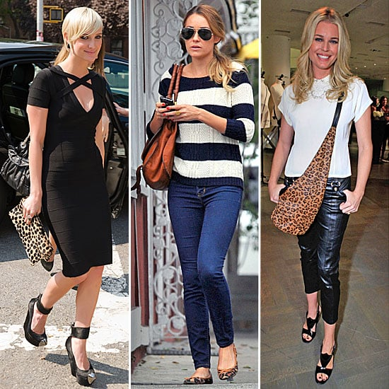 Celebrity Leopard Print Accessories