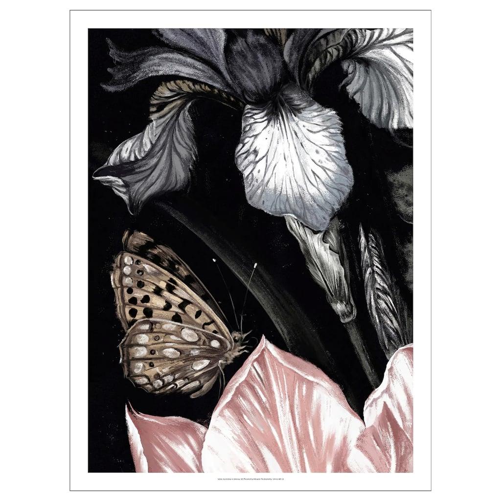Pjätteryd Butterfly Picture