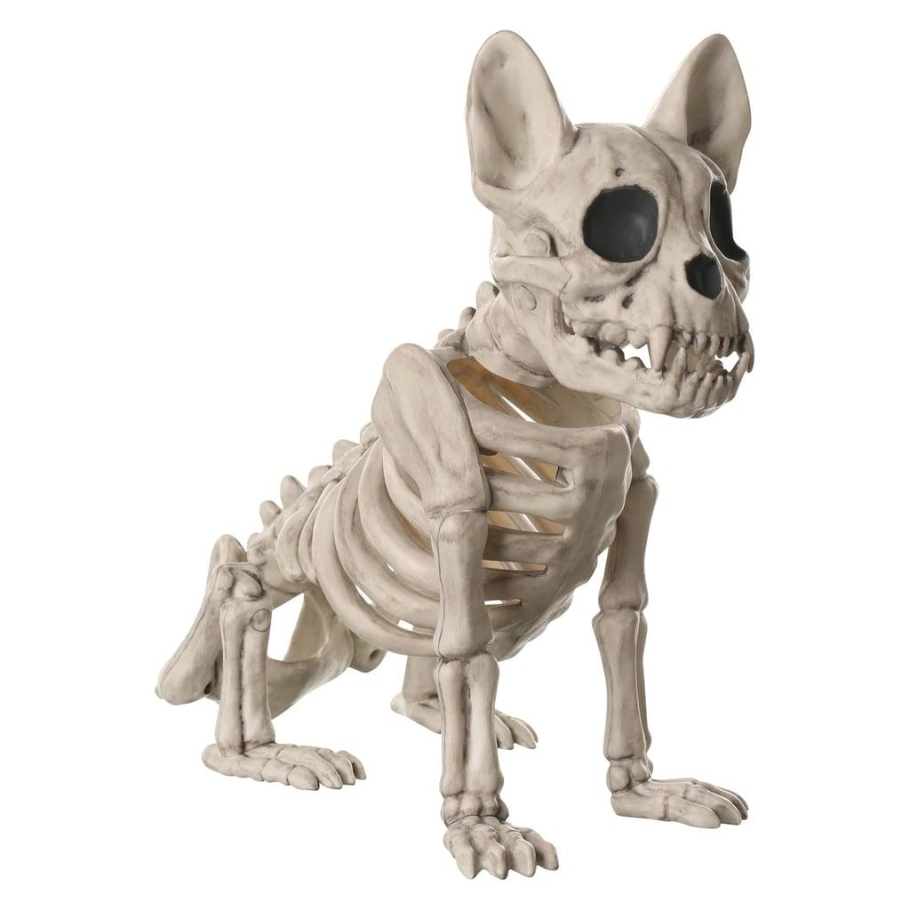 halloween french bulldog skeleton | cheap target halloween decor