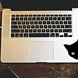 Black Cat Decal Sticker ($2+)
