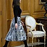 Queen Letizia's Zara Snakeskin Skirt