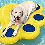 Paws Aboard Inflatable Doggy Lazy Raft for Large Dogs