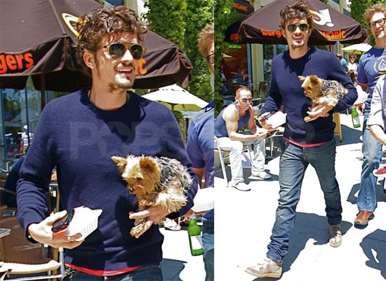 Pictures of Orlando Bloom and His Yorkshire Terrier Frankie