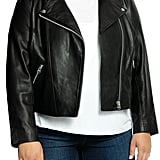 All 67 Lifetime Leather Moto Jacket