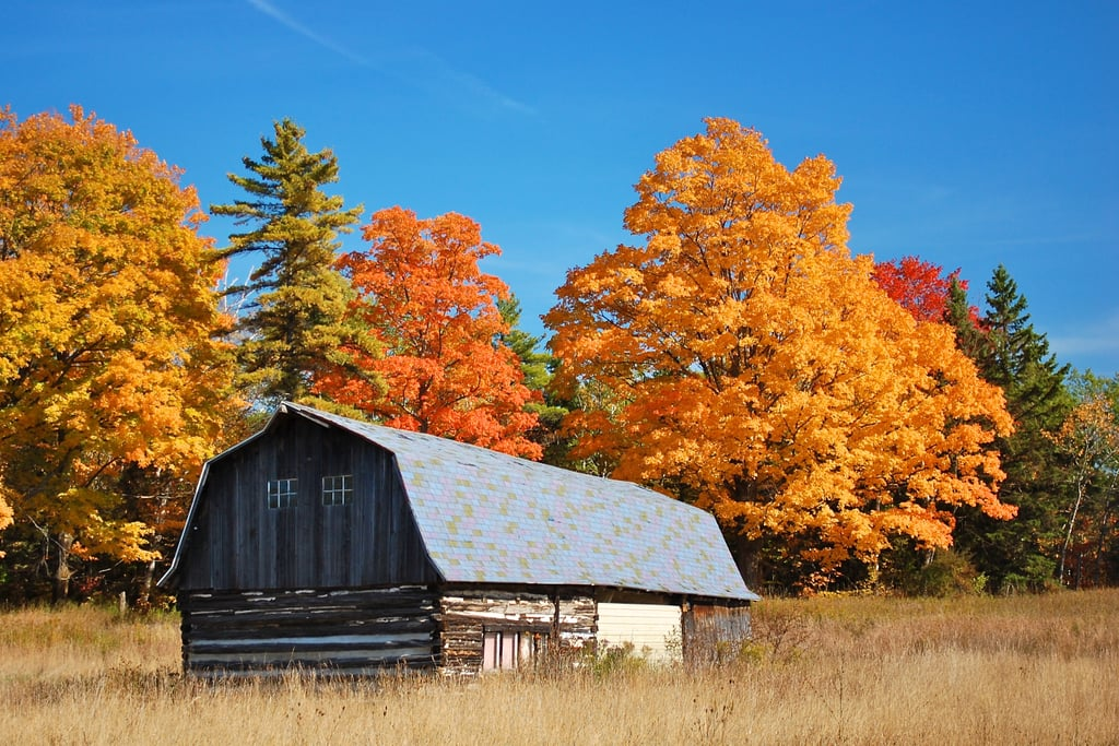 Fish Creek Wi Best Cities To See Fall Leaves Popsugar