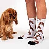 Sock Your Pet Personalized Pet Socks