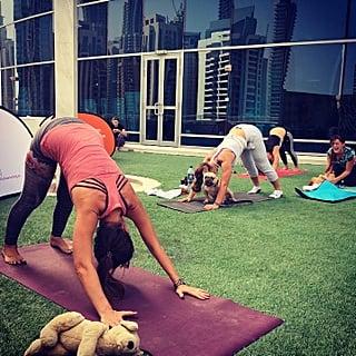 Puppy Pilates Dubai