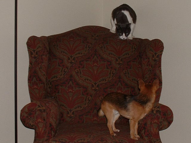 Wingback chair or guerrilla warfare tactic? Source: Flickr User inkynobaka