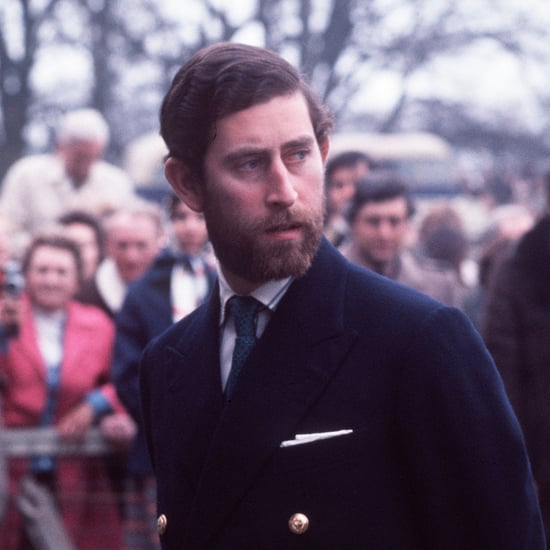 Prince Harry and Prince Charles Lookalike Beard Photos