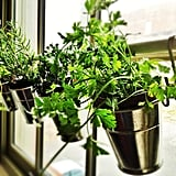 Hanging Herb Planters