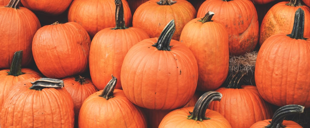 When to Plant Pumpkins to Have Them For Halloween