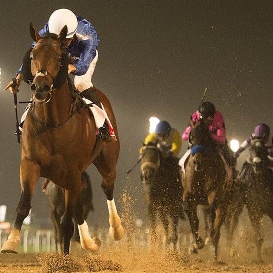 أبرار ياسين العبيسي تصبح أوّل مدرّبة خيول في المملكة العربيّ