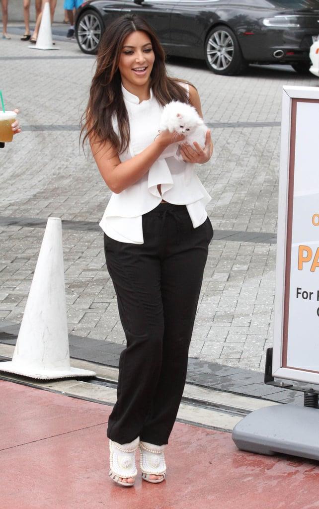Kim Kardashian Cuddles Up to Her Cute New Companion Mercy