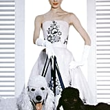 Audrey Hepburn Halloween Costume Ideas | POPSUGAR Celebrity