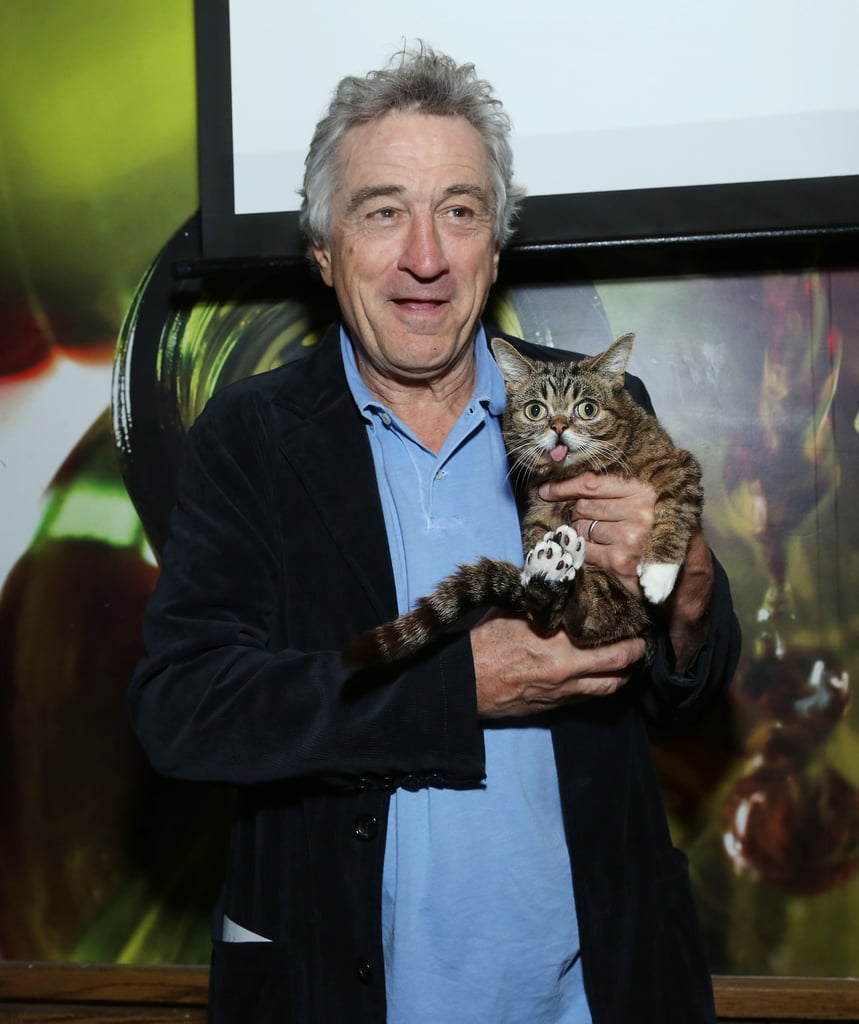 Lil Bub and Robert De Niro Picture
