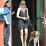 Kate Bosworth took Lila to the vet.