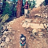 Photos of Trail in Wild Movie   Pacific Crest Trail