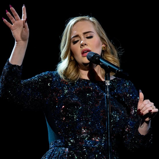 Adele Dedicates Her Concert to Brad Pitt and Angelina Jolie