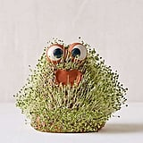 Urban Outfitters Lil Blob Friend Chia Pet