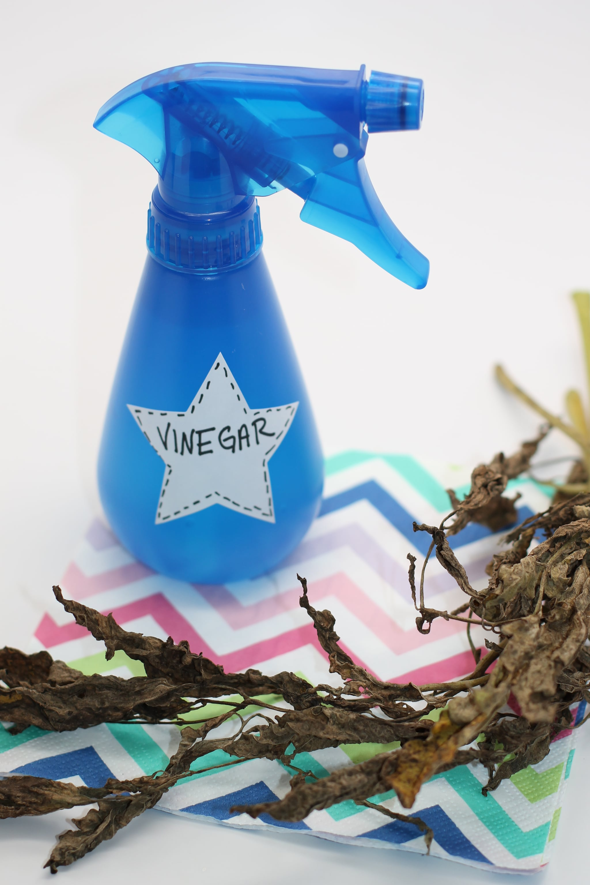 Kill Weeds With Vinegar 5 Easy Hacks That Will Change The Way You Garden Popsugar Home Middle East Photo 2