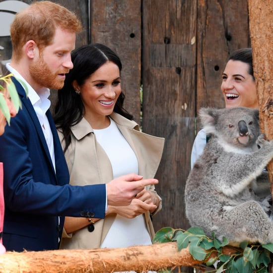 Prince Harry and Meghan Markle With Koala Taronga Zoo