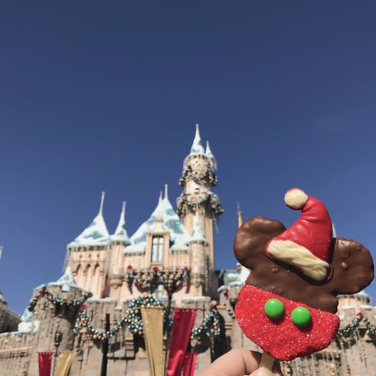 Disneyland Holiday 2016