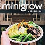 Illinois — Minigrow