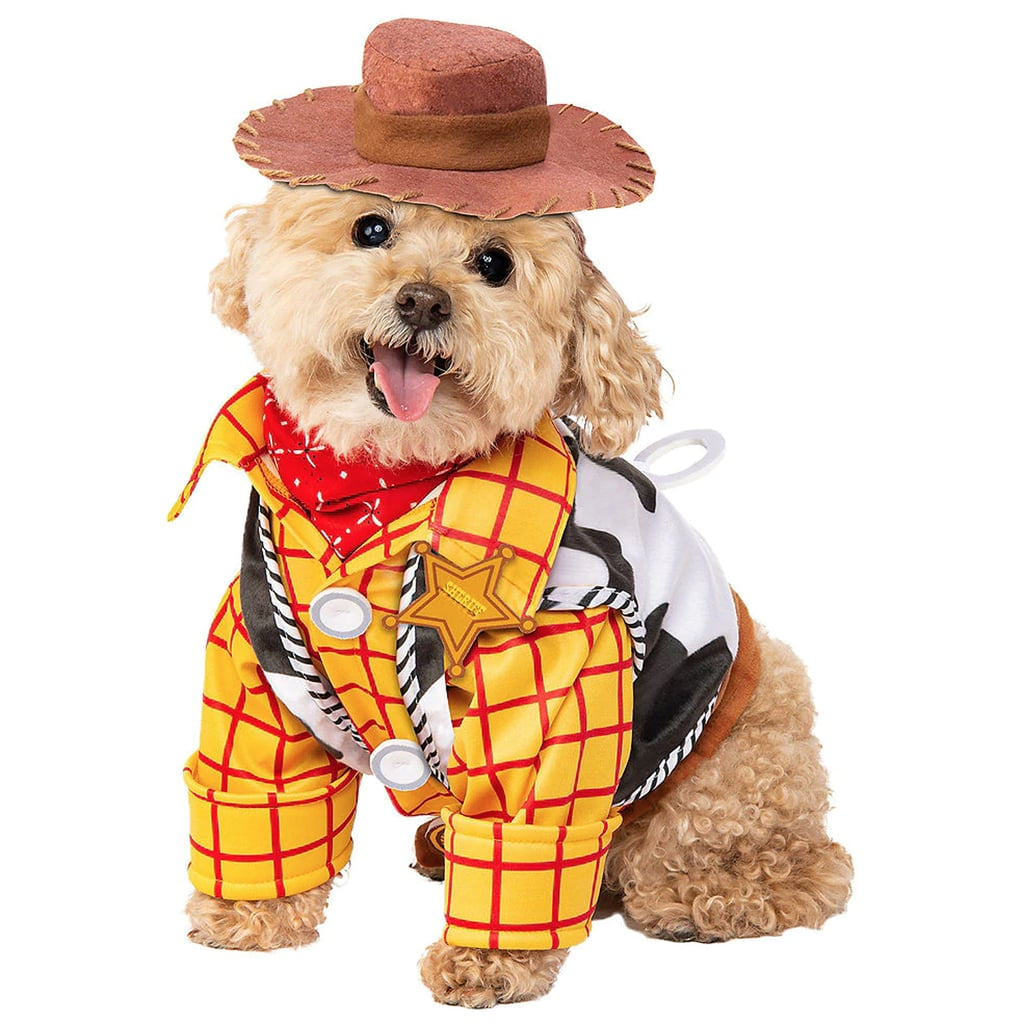 Best Costumes For Dogs