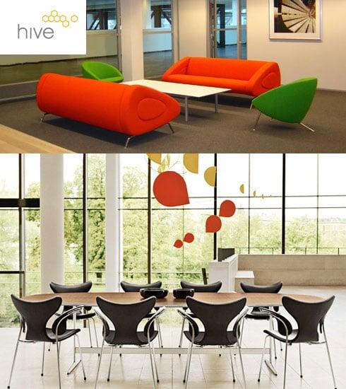 Casa Shops: Hive Modern