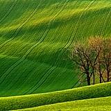 Rolling Hills, Czech Republic