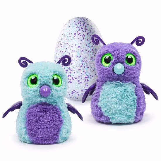 Sara Gruen Reselling Hatchimals to Pay Lawyer Fees