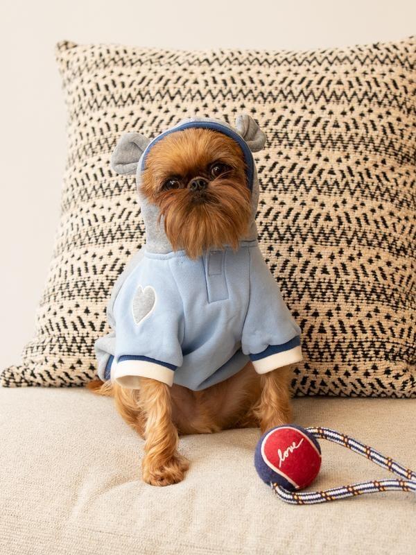 ED Ellen Degeneres Burgundy Love Tennis Ball Pet Toy