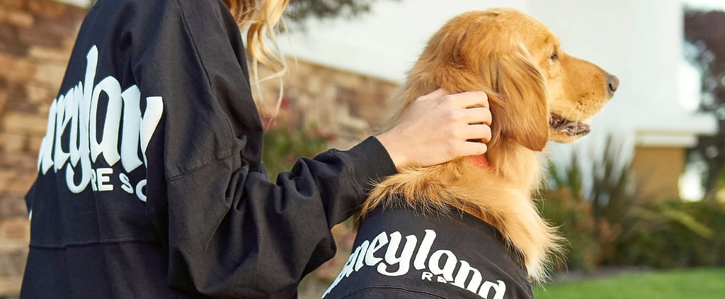 Shop Disney's Spirit Jerseys For Dogs
