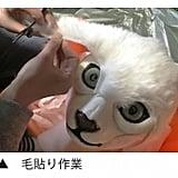 Wearable Cat Head