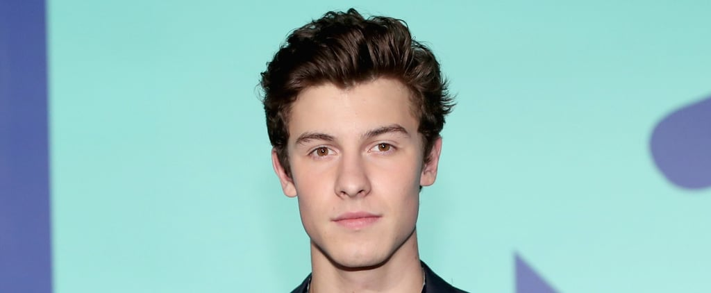 Definitive Proof That Shawn Mendes Had the Best (and Thirstiest) Fans at the VMAs