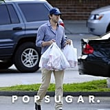 Ryan Reynolds went grocery shopping with Blake Lively in New York.