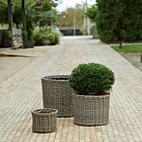 All Weather Wicker Cylinder Planter