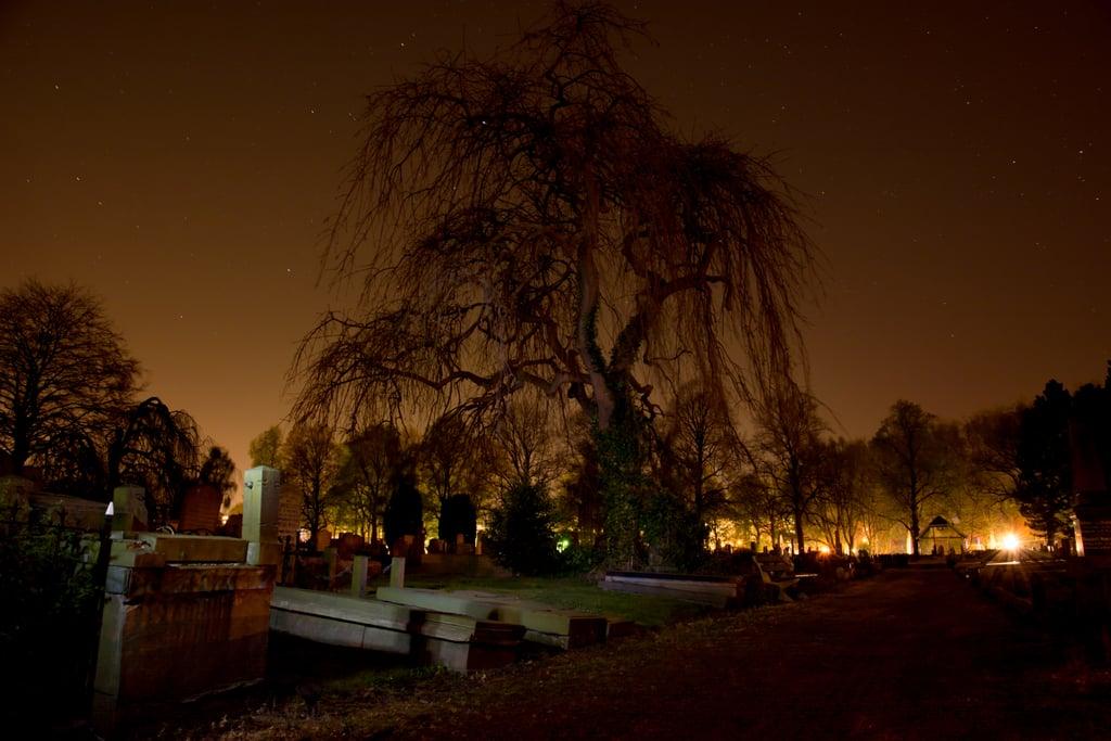 Take a cemetery tour.