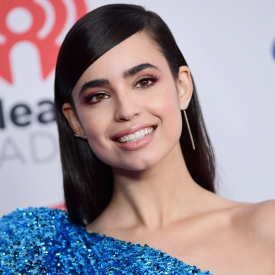 Who Is Sofia Carson?