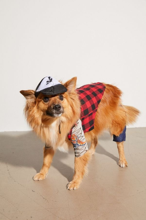 Hipster Dog Halloween Costume