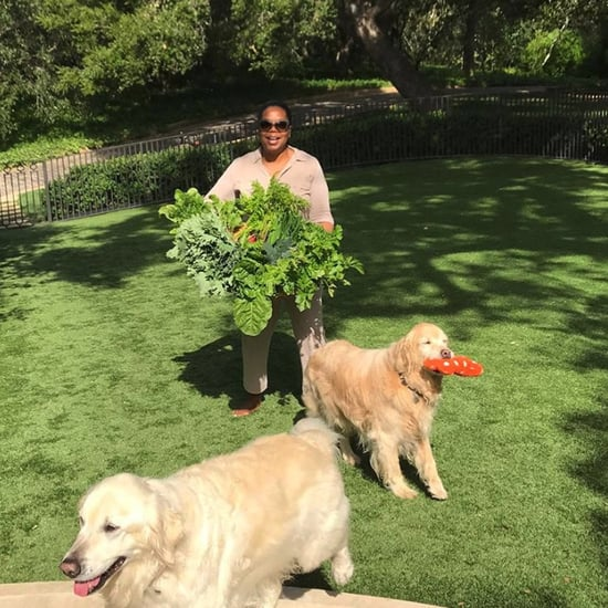 Photos of Oprah Winfrey's Houses