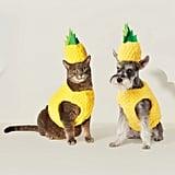 Pineapple Dog Costume