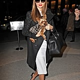 Miranda Kerr styled a white knee-length dress with a black coat while out and about with her dog in NYC.