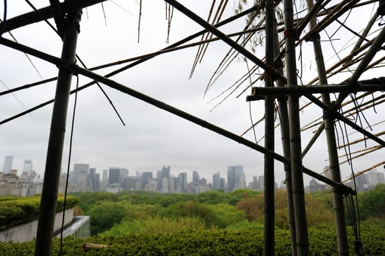 Pictures of Big Bambu at Met
