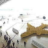 Largest human image of an airplane