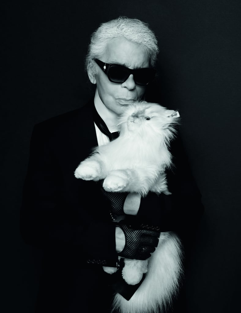 buy karl lagerfeld choupette cat toy popsugar middle east pets. Black Bedroom Furniture Sets. Home Design Ideas