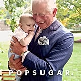 صور البورتريه الملكية للأمير تشارلز بمناسبة عيد ميلاده الـ70