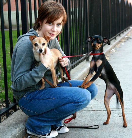 In the Spotlight: Amy Adams With Pippy and Sadie!