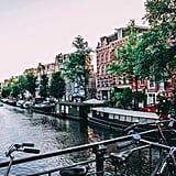 Scorpio: Amsterdam (Oct. 23 to Nov. 21)